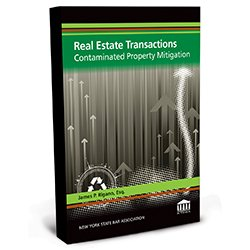 RealEstateTransactionsContaminatedPropertyMitigation_New Design_250X250