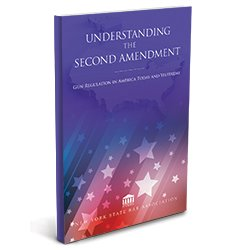 UnderstandingtheSecondAmendment_250X250