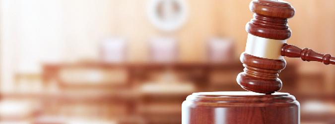 Surrogate's Court Update_social4
