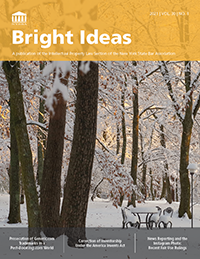 BrightIdeas-2021vol30no1Cover