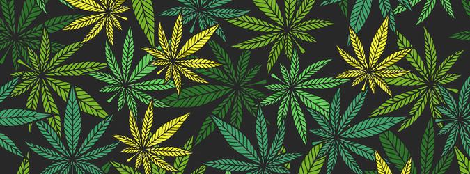 NYAdultUseMarijuana_675