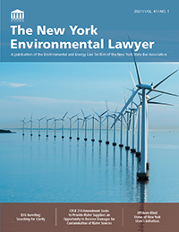 EnvLawyer-2021Vol41No1_cover